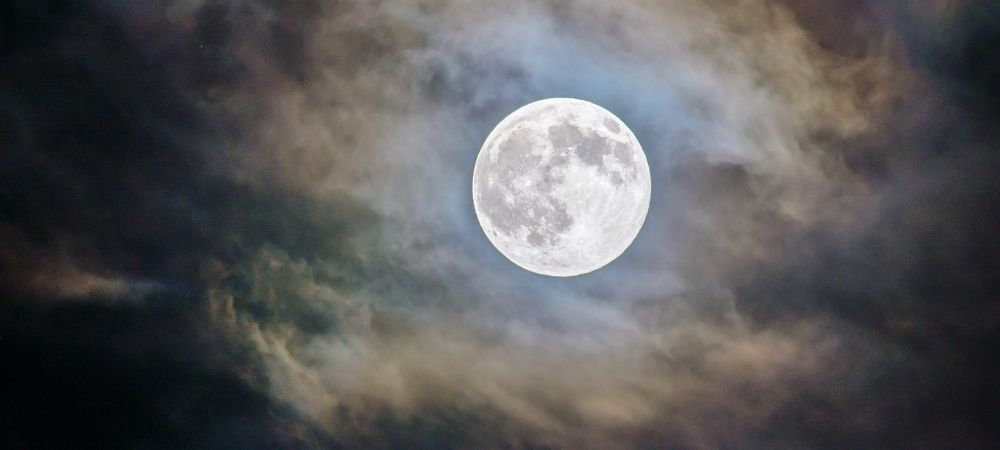 Tout ce qu'il faut savoir pour jardiner avec la Lune - Brico Privé